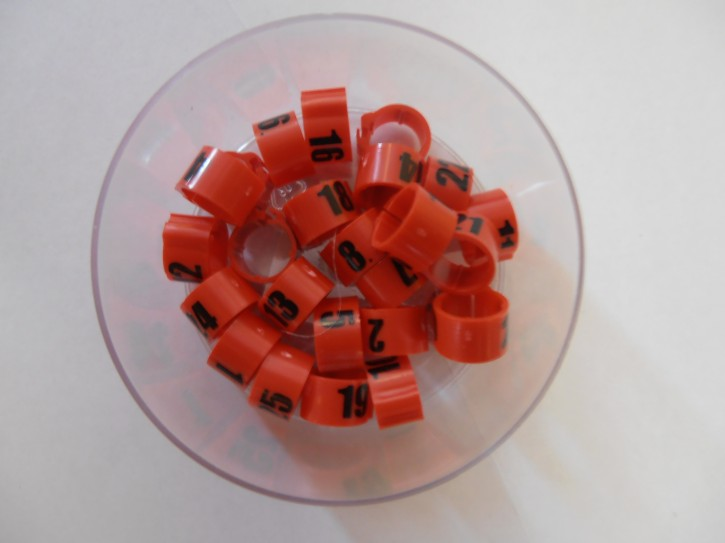 Clipsringe mit Nummern 26-50 diverse Farben