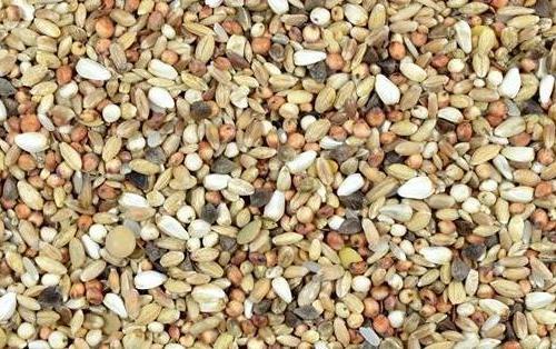Kampol DS Spezial 25kg