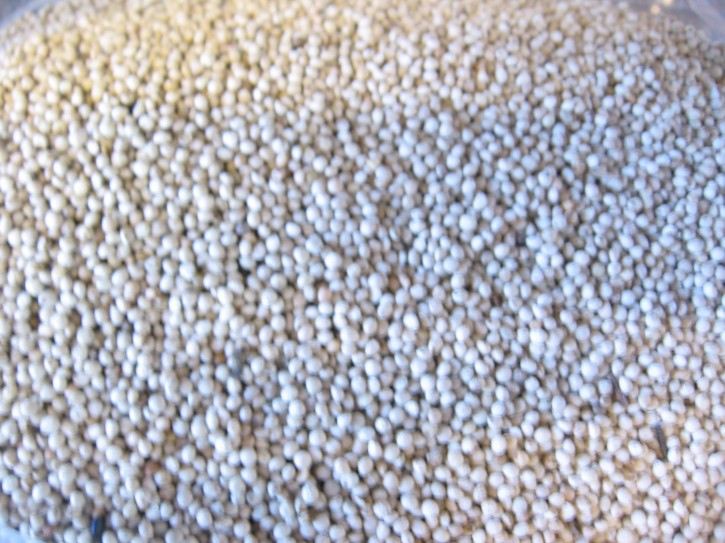 Perillasamen weiß 2,5kg
