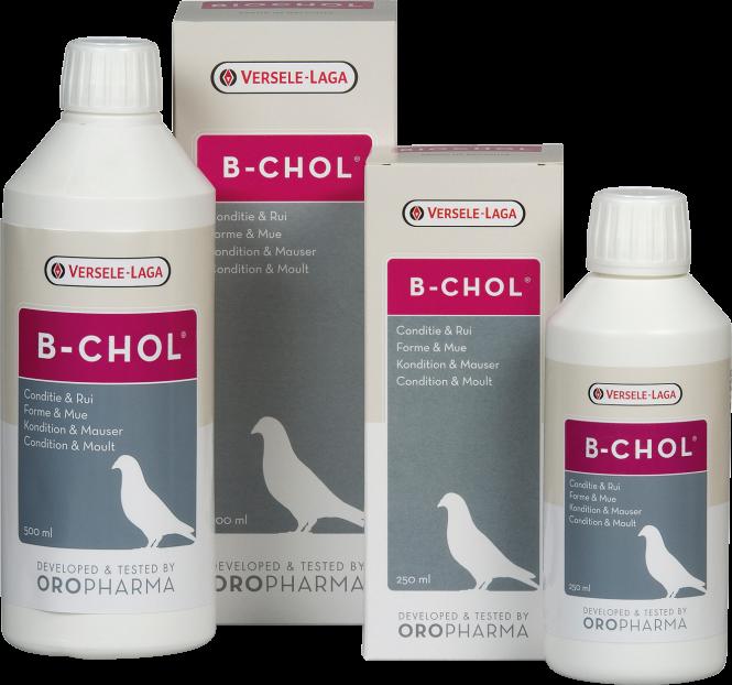 Oropharma B-Chol 500ml Mauserhilfe