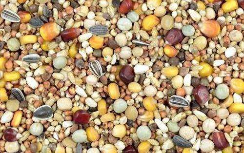 Kampol RL+ ohne Weizen 25kg