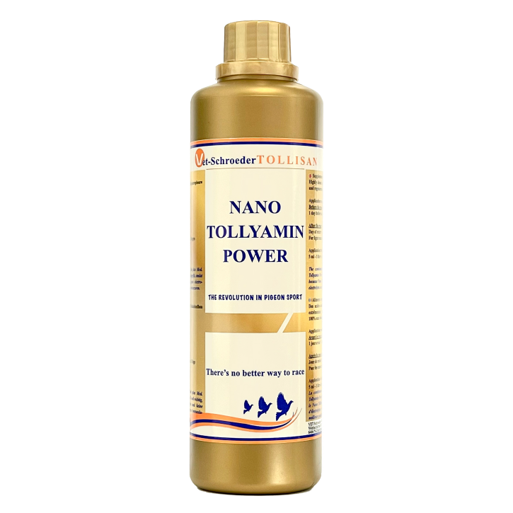 Tollisan Nano Tollyamin Power 500ml NEU