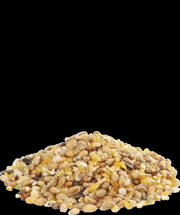 Versele-Laga Gra-Mix Ardenner Mischung 20kg