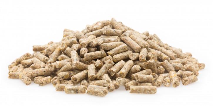 mifuma Legekorn Eco 25kg