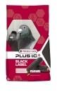 Versele-Laga Gerry Plus I.C. BLACK 22kg PROMO