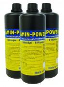 Sandeck Amin Power Forte 1000ml