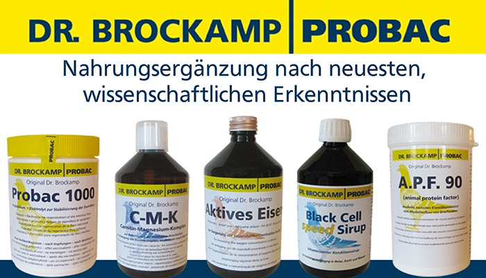 Slide Dr Brockamp