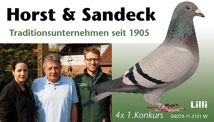 Slide Sandeck Lilli