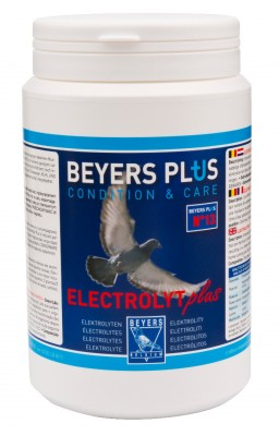 Beyers Elektrolyt Plus 500g