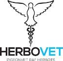 Herbovet SAMBUCUS 500ml