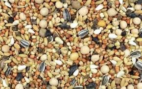 Kampol BK ohne Mais ohne Weizen 25kg