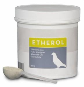 Etherol Hirn 200g