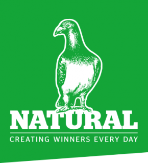NATURAL Nutri Powder+ 500g NEU