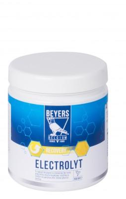 Beyers Elektrolyt 500g