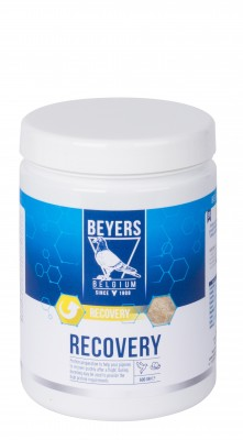 Beyers Recovery 600g