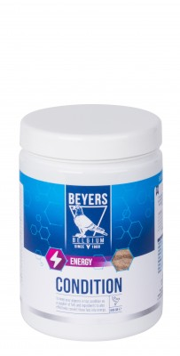 Beyers Condition 600g