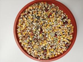 Sandeck Jubiläum-Mischung ohne Weizen 40x25kg frei Haus