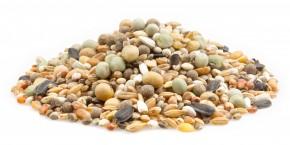 mifuma Klassik ohne Mais Vital 25kg