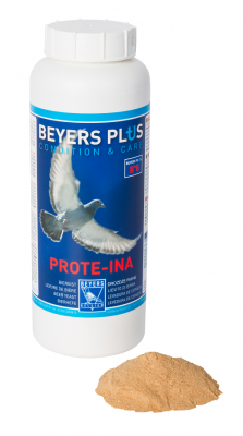Beyers Prote-ina 600g