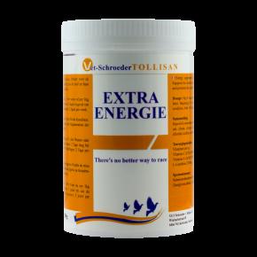 Tollisan Extra Energie 300g