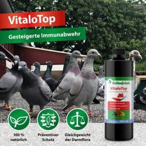 Röhnfried VitaloTop 500ml